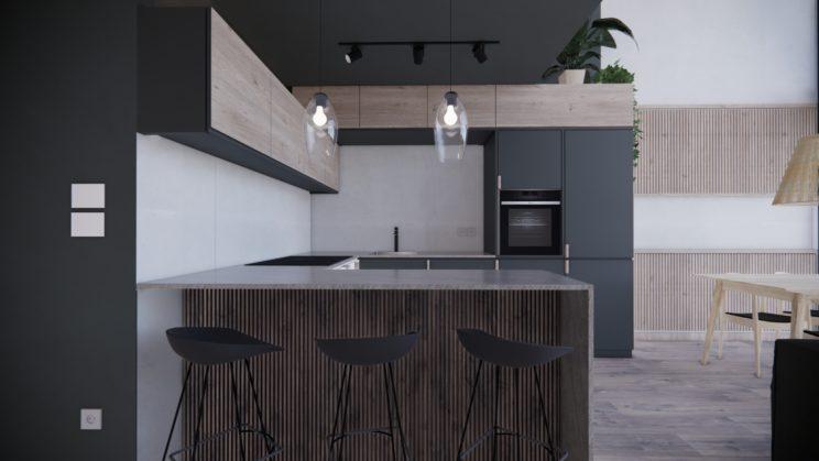 Contemporary kitchen duplex